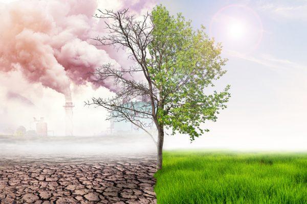 uneatlantico-soluciones-cambio-climatico